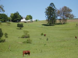 country getaway dayboro